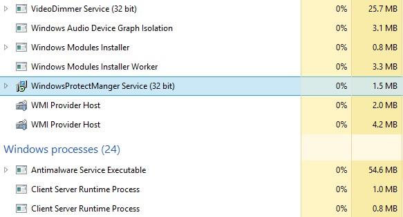 WindowsProtectManger Service
