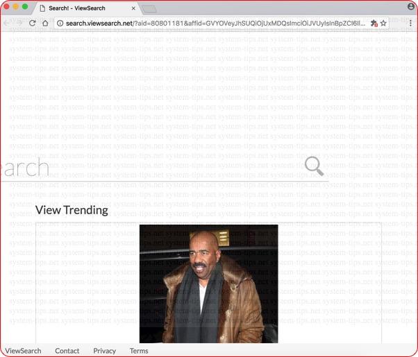 Search.viewsearch.net hijacker