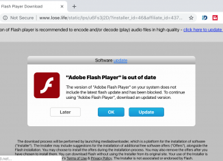 Lose.life fake Adobe Flash Player alert