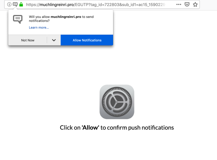muchlingreinri.pro notifications