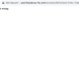 Usd.theodorus-flo.com redirect virus